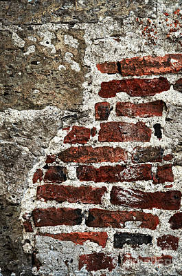Wall Photograph - Grunge Brick Wall by Elena Elisseeva