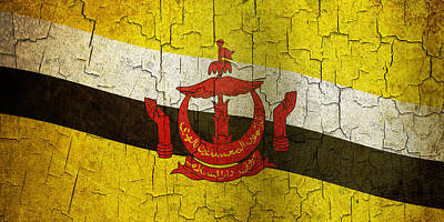Digital Art - Grunge Brunei Flag by Steve Ball