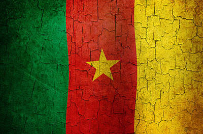 Digital Art - Grunge Cameroon Flag by Steve Ball