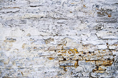 Cement Photograph - Grunge Wall by Elena Elisseeva