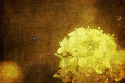 Zen Garden - Grungy Floral by Rhonda Barrett