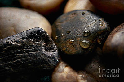 Digital Art -  Rocks And Drops by Margie Chapman