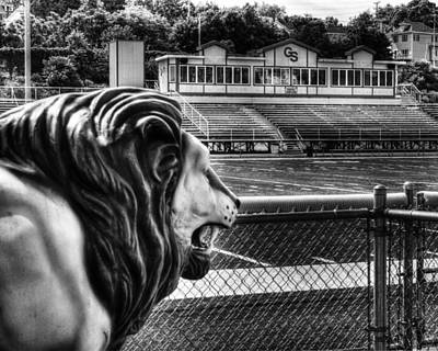 Photograph - Gshs Lion by Coby Cooper