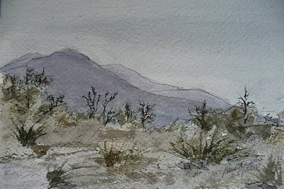Painting - Guadalupe Mountains - February 2010 by Joel Deutsch