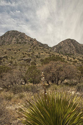 Photograph - Guadalupe Mountains Vertical by Melany Sarafis