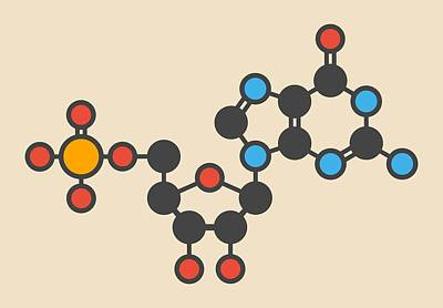 Guanylic Acid Molecule Print by Molekuul