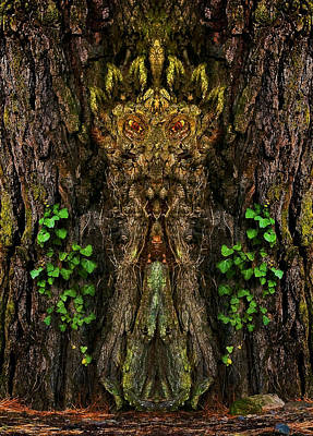 Photograph - Guardian Of The Wild Woods by Jane McIlroy