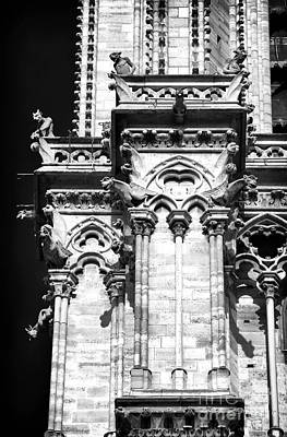 Photograph - Guardians Of Notre Dame by John Rizzuto