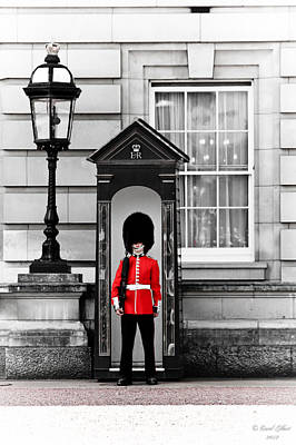 Catherine Middleton Photograph - Guarding The Palace 2 by Coral Gilbert