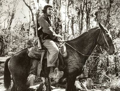 Photograph - Guevara Atop A Mule by Celestial Images