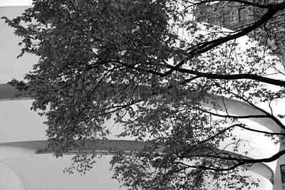 Photograph - Guggenheim And Trees In Black And White by Rob Hans