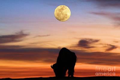 Under The Moon Wall Art - Photograph - Guiding Light by Adam Jewell