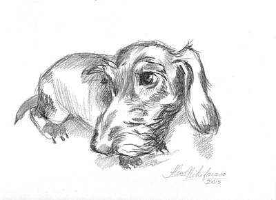 Guilty-looking Young Wire-haired Dachshund Art Print