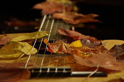 Photograph - Guitar Autumn 2 by Mick Anderson