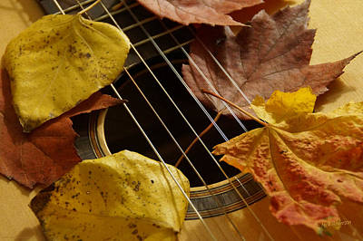 Photograph - Guitar Autumn 3 by Mick Anderson