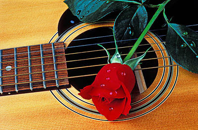 Guitar With Single Red Rose Art Print