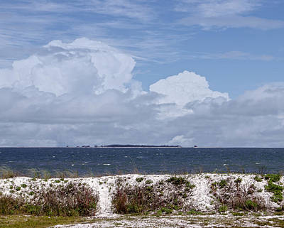 Photograph - Gulf Coast Beauty by Judy Hall-Folde
