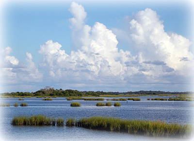 Photograph - Gulf Coast Saltwater Grass View by Sheri McLeroy