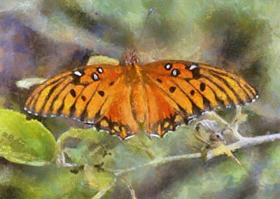 Digital Art - Gulf Fritillary Butterfly by Charmaine Zoe