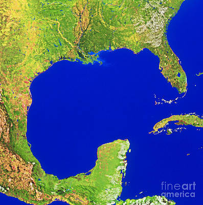 Photograph - Gulf Of Mexico by WorldSat International Inc