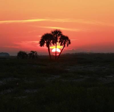 Gulf State Park Sun Palm Original