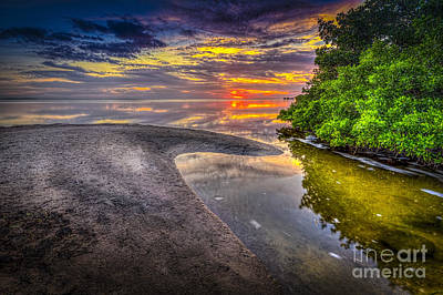 Ocean Springs Photograph - Gulf Stream by Marvin Spates