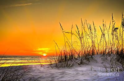 Oats Photograph - Gulf Sunset by Marvin Spates