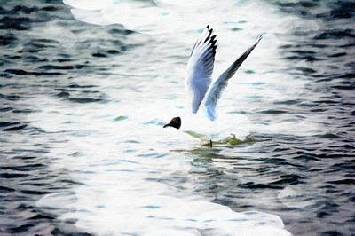 Gull Flying Original by Tommytechno Sweden