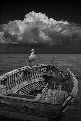 Photograph - Gull On Shipwrecked Boat by Randall Nyhof