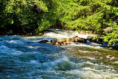 Photograph - Gull River  by Les Palenik