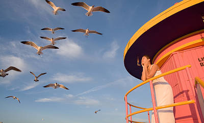 Photograph - Gull Watching by Matthew Pace