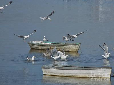 Gulls And Dories Art Print by Christopher Mace