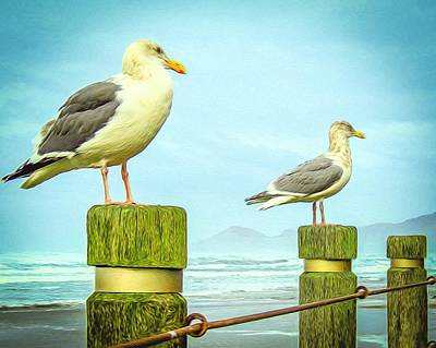 Gulls Art Print by Denise Darby
