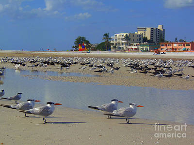 Painting - Gulls In Formation Siesta Beach by Lou Ann Bagnall