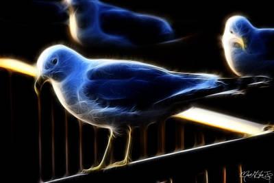 Music Figurative Potraits - Gulls by Michael Frank Jr