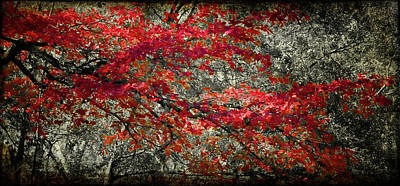 Digital Art - Gum Fall by Lana Trussell