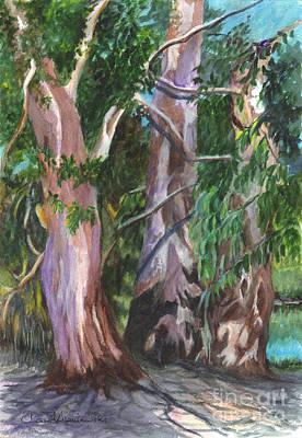 Gum Trees In Oz Art Print by Carol Wisniewski