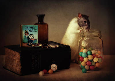 Rodent Wall Art - Photograph - Gumballs (published In The New 1x Book memento.) by Ellen Van Deelen