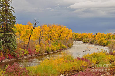 Photograph - Gunnison River Colors by Kelly Black