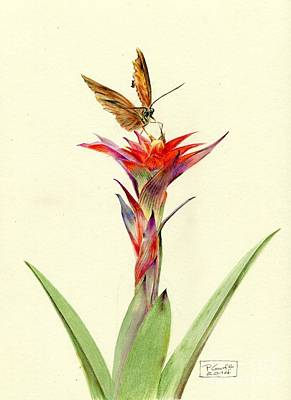 Painting - A Bromeliad Entertains A Visitor by Penrith Goff