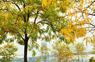 Politicians Royalty-Free and Rights-Managed Images - GW Bridge-Framed by Fall by Regina Geoghan