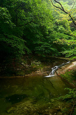 Photograph - Gyeryongsan Stream And Pool by Brad Brizek