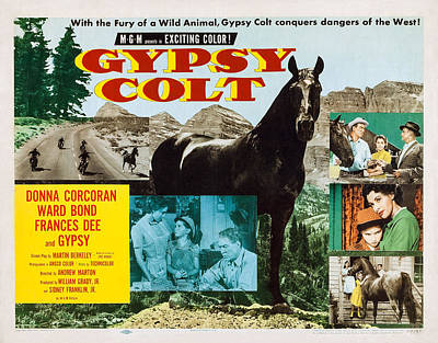 Gypsy Colt, Us Lobbycard, Center Art Print
