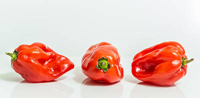 Photograph - Habanero Chillies by Gary Gillette