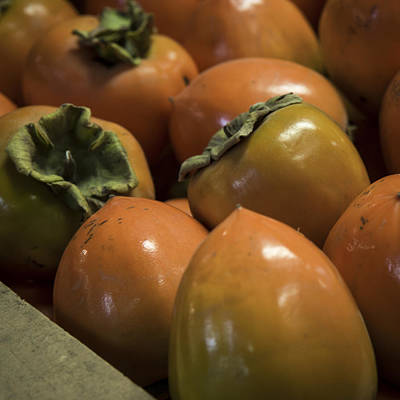 Photograph - Hachiya Persimmons by Caitlyn  Grasso