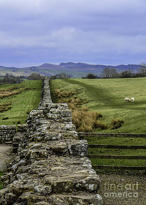 Photograph - Hadrian's Wall by Mary Carol Story
