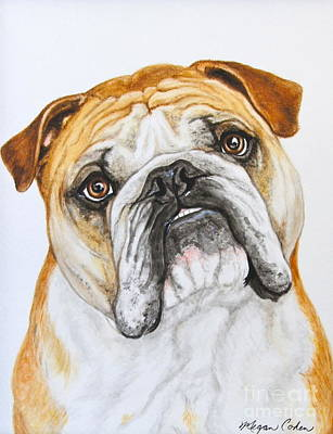 Painting - Bulldog-haggan 2 by Megan Cohen