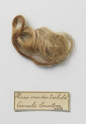 Found Art Drawing - Hair Found In The Tomb Of Cornelis Evertsen by Quint Lox