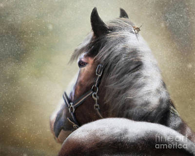 Shire Horse Digital Art - Hairs For The Nest by Trudi Simmonds