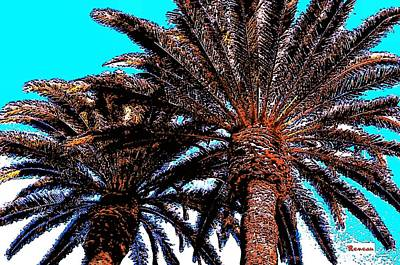 Photograph - Hairy Umbrella Palms by Sadie Reneau